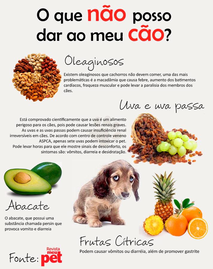 alimentos_proibidos_caes
