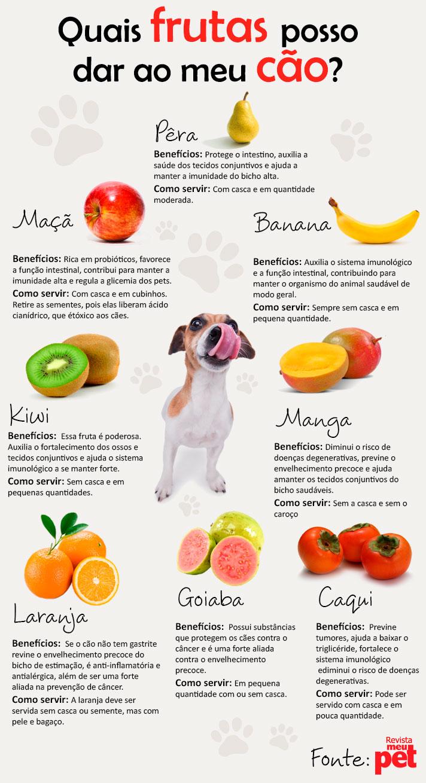 caes_frutas_beneficas